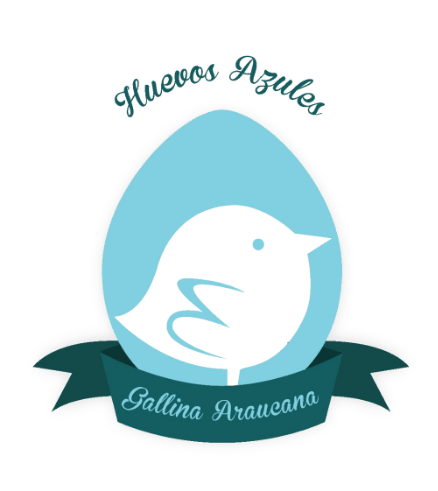 Huevos azules al alcance de todos gracias a Gallina Araucanas