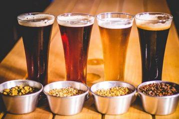 Receta para hacer cervezas