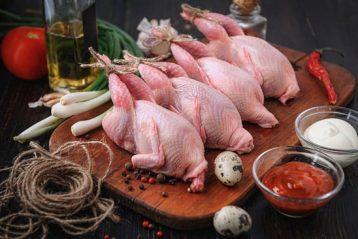 cocinar Carne de caza